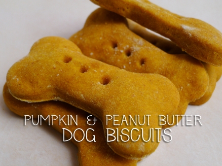 Pumpkin & Peanut Butter Dog Biscuits